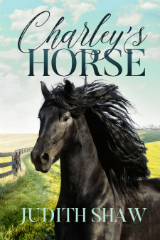 Charley's Horse by Judith Wile Shaw